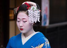 Maiko Katsunosuke wearing wisteria kanzashi for the month May.