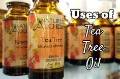 4 Effective Uses of Tea Tree Oil - Prettitude