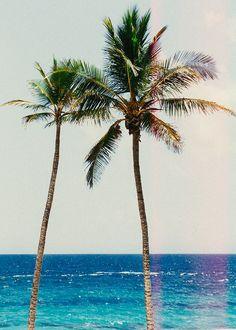 Bermuda Explorers: A Guide to Bermuda