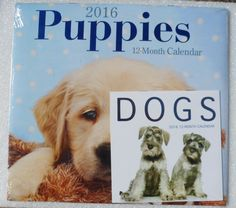 Puppies 2016 Calendar! Original Unopened Cellophane! Pocket Calendar! Perfect For Collectors & Scrapbooking! Free Shipping Now! On Sale Now! by OldLadyWhite on Etsy