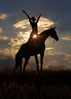 Women on horse silhouette - Sunburst - by horses en vogue
