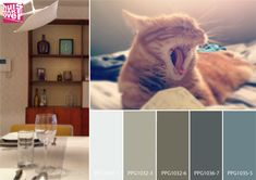 "Lounging is an art best learned from cats. Their comfortable positions and their ""I don't care about anything"" attitude makes them our best teachers.  Certain colours help unwind us more in this busy world we live in. What colours relax you?  #mondaymood #kleuradvies  #kleurinspiratie #interieurinspiratie #moodboard #interieurontwerp #interieuradvies #wooninspiratie #kleurentrends #kleurenpalet #voiceofcolour #verf #kleurspecialist #makeoveracademynl #huismakeover #lucyghazal  #colouraddict"