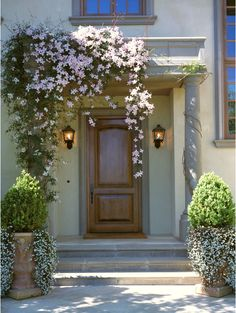 The clematis and the urns make this front entry a gracious focal point. The drape of the clematis over one side adds the contrast that keeps this from being too balanced and predictable. Modern Front Door, Front Door Design, Front Entry, Front Porch, Entrance Design, Beautiful Front Doors, Trailing Flowers, Hanging Flowers, Cascading Flowers