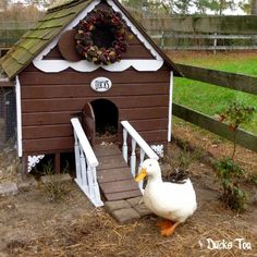 Totally gonna use this idea for our winter duck house for Winter duck house