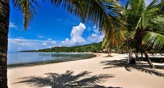 Palmetto Bay PlantationRoatan Beach & Dive Resort in Honduras.. Vacation March 2013!! Woooo Hoooo - FUN - I LIKE!!!