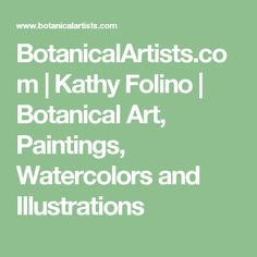 BotanicalArtists.com | Kathy Folino | Botanical Art, Paintings, Watercolors and Illustrations