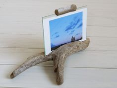 drift wood photo stand