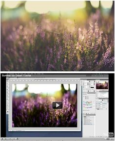 Vintage, hazy tones - Learn how you can post process in simple, easy steps - News & Musings - Photographer Photoshop Templates and Marketing Materials