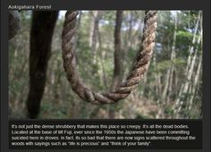 25 Creepiest yet Fascinating Places on Earth | FB TroublemakersFB Troublemakers