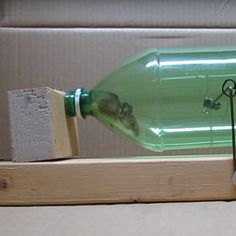 Use a mouse's own weight against it to create a simple & humane trap. Homemade Mouse Traps, Rat Traps, Soda Bottles, Clean Up, Carpentry, Cleaning Hacks, Home Improvement, How To Make Money, Diy Projects