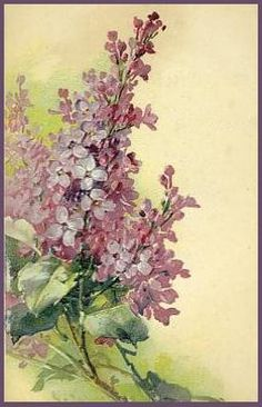 Lilac:    http://www.lilac-n-lavender.blogspot.com/2012/01/springtime-gift-tags.html