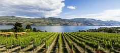 Here are 15 places and activities you'd regret missing out on in Kelowna
