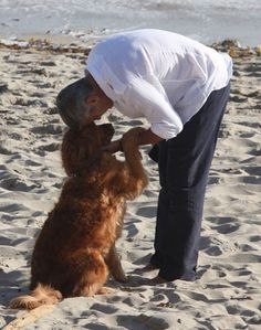George Clooney and a golden retriever on a beach. This picture is the pinnacle of American beauty.