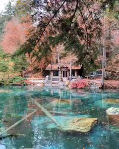 Reisen Lake Blausee, Switzerland Article Physique: Purses are the brand new sneakers, the will need Vacation Places, Vacation Destinations, Dream Vacations, Vacation Spots, Places Around The World, Oh The Places You'll Go, Travel Around The World, Cool Places To Visit, Beautiful Places To Travel