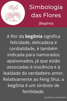 Begônia Feng Shui, Begonia, Occult, Witchcraft, Tarot, Flowers, The Witches Book, Book Of Shadows, Frases