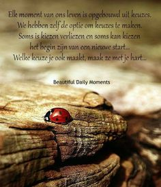 Elk moment van ons leven is opgebouwd uit keuzes ...