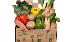 Well done Asda!  'The UK's first supermarket 'wonky vegetable' box goes on sale on Friday, containing enough ugly potatoes and knobbly carrots to feed a family of four for an entire week for just £3.50. The Asda box is filled with in-season winter vegetables and salad ingredients at a price that is 30% cheaper than standard lines.'  Asda puts UK's first supermarket wonky veg box on sale: