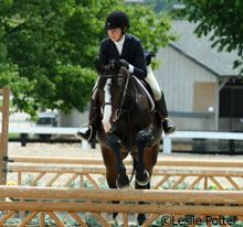 Tips on how to improve your huntseat equitation