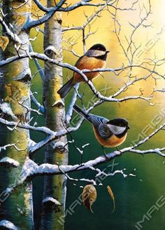 by Jim Hansel | Birds And Flowers | Imagimex
