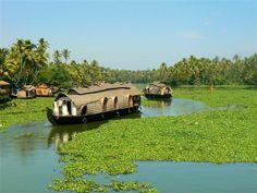 Houseboats on the backwaters of Kerala, India