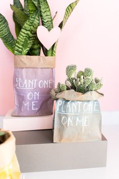 Plant One On Me: How to Make Budget-Friendly DIY Valentines (That Don't Suck) in 5 Minutes - Paper and Stitch