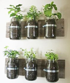 envases de vidrio en la pared