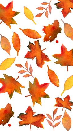 Fall Leaves | Flickr - Photo Sharing! #iphone #wallpaper #leaves #thanksgiving                                                                                                                                                                                 More
