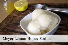 Lemon Honey Sorbet...Fruit Sorbets &Sherbets - Fruity Scoops - Scoop Adventures