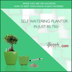 Self Watering Planters see more https://yuccabeitalia.com