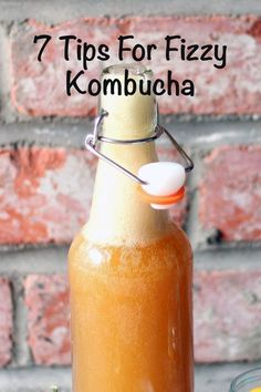 7 Tips For Fizzy Kombucha Avoud Flat Kombucha forver! Sugar, time, temperature and the bottles you use all play a part in getting really fizzy kombucha. Here are 7 Tips For Fizzy Kombucha. Kombucha Fermentation, Kombucha Scoby, How To Brew Kombucha, Fermentation Recipes, Homebrew Recipes, Kombucha Brewing, Kombucha Bottles, Kombucha Starter, Kombucha Benefits