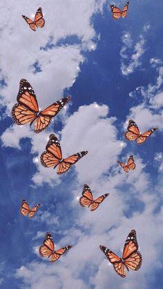 Butterfly Wallpaper Iphone, Cloud Wallpaper, Trippy Wallpaper, Iphone Background Wallpaper, Retro Wallpaper, Wallpaper Desktop, Painting Wallpaper, Cute Blue Wallpaper, Pastel Iphone Wallpaper