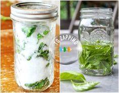 Green School, Dehydrated Food, Fresco, Kids Meals, Freezer, Cooking Tips, Mason Jars, Veggies, Food And Drink