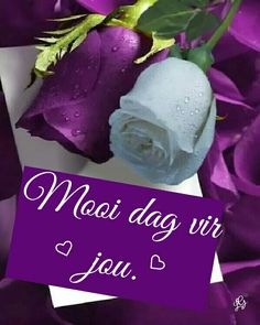 Morning Blessings, Good Morning Wishes, Good Morning Quotes, Lekker Dag, Afrikaanse Quotes, Goeie Nag, Goeie More, Strong Quotes, Deep Thoughts
