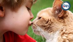 """""""Some things just fill your heart without trying"""" #timeforpet #petlove #quoteoftheday"""