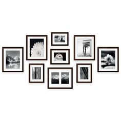 Ivoire photo cadre photo Mounts Bevel Cut Mount Pack de 4 8 12 et 24