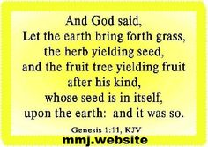 who would prescribe such a medicine http://mmj.website/