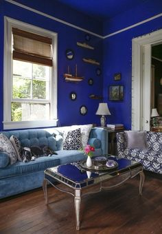 Cobalt blue wall. The Beautifully Strange World of Miranda Lake — House Tour Greatest Hits