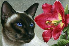 Siamese Cat Print Pink Lily from an original by I Garmashova Cat With Blue Eyes, Gatos Cats, Pastel, Most Beautiful Animals, Cat Drawing, Cat Tattoo, Siamese Cats, I Love Cats, Cat Art