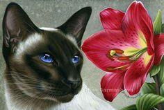 Cats Botanical Amaryllis Irina Garmashova Siamese Cats