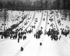 Tobogganing/Snow in general  (High Park Toboggan Runs, 1914, City of Toronto Archives, Fonds 1244, Item 441A)