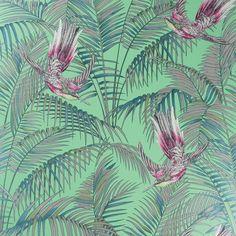 Discover+the+Matthew+Williamson+Sunbird+Wallpaper+-+W6543-03+at+Amara