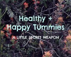 Healthy +  Happy Tummies