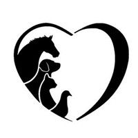 Wish | FASHION ANIMAL LOVER Pet Dogs And Cats Veterinarian Horse Car Styling Auto Motorcycle Car-styling Covers Reflective Personality