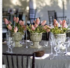 Three gray urns filled with pink tulips rested on the square tables. I have these exact urns, wheels are turning with ideas...