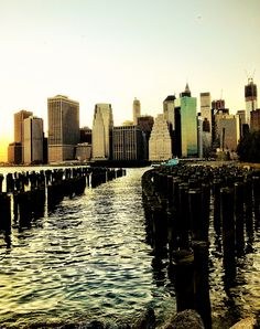 The New York City Skyline as seen from Brooklyn Bridge Park by Vivienne Gucwa, via Flickr