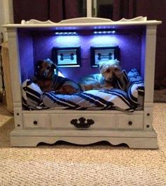 How precious and cozy is this!! An old dresser turned into a Neat Doggie Bed!!