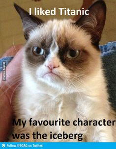 Mine too Grumpy Cat!!! | Someone said this the other day... ICEBERGS! | @9gag