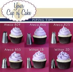 Cupcake Frosting Tips For Bag