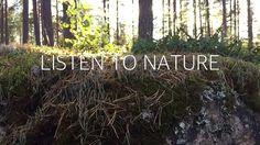 Metsä. Se puhuttelee.