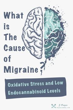 What Causes Migraines? Migraines, Oxidative Stress, and Endocannabinoid Deficiency How To Stop Migraines, Causes Of Migraine Headaches, What Is A Migraine, Oxidative Stress, Remedies, Health, Salud, Health Care, Healthy